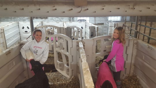 Allison Marti, 12, and Chloe Marti, 8, work on their family's dairy farm.