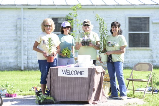 On June 5 members of the Earth, Wind and Flowers Garden Club finally held a plant sale. Plants, which had been dug earlier for the canceled May sale, were delivered to the open area outside the flower show building on the Crawford County Fairgrounds. Working the 3 to 5 shift were: (L-R) Marylyn Strang, Janet Nance, Judy Widman, and Mary Lee Minor.