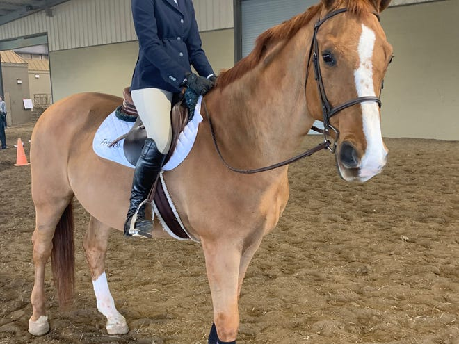 Hayden Center, a freshman at Florida State University Schools (FSUS), has competed on both the Tallahassee Riding Academy team which is open to any 4th to 12th grade student across our region and the FSUS Equestrian Team.