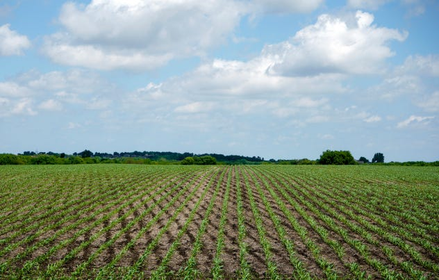 Until now, scientists didn't have a full picture of how crop rotation and tillage influence the soil microbiome.