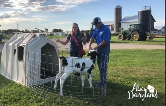 Abigail Martin and her father, Joe Martin, share information about calves during a virtual tour on their Milton dairy farm on June 6. The event was co-hosted by the Martin family and Dairy Farmers of Wisconsin and be posted live on Facebook .