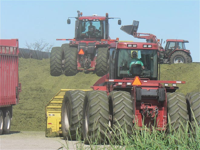 Four tractors packing hay in a bunker.
