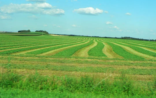 Nothing like the smell of newly cut hay in the spring.