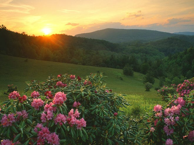 Looking to retire or relocate to a new city? Consider moving to Asheville, North Carolina.
