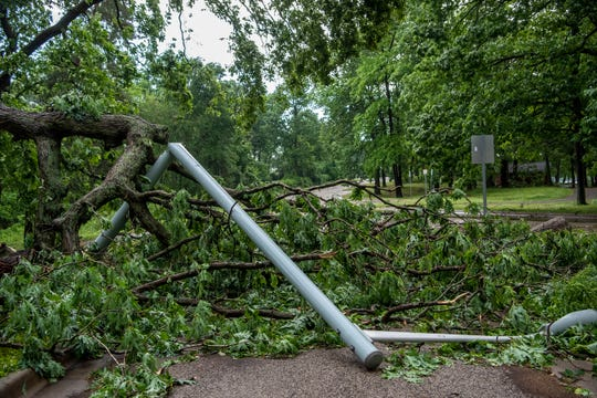 A streetlamp and tree lay on the ground after a severe thunderstorm on Wednesday, June 10, 2020 at Willard Beach Park in Battle Creek, Mich. Wind gusts of up to 60 mph were reported in the region, toppling trees and power lines and causing outages.