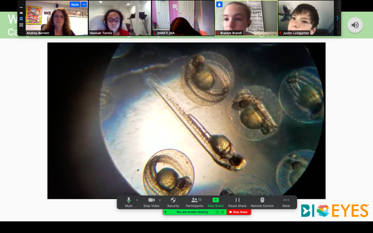 Sixth graders and their teacher, Andrea Barnett, make scientific discoveries virtually.
