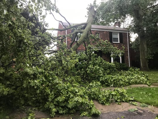 The top of a tree came down in the Wednesday evening storms at a house on Maison Road in Grosse Pointe Farms.