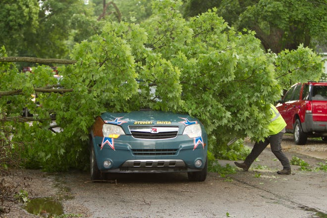 Sudden strong winds downed several trees in the city of Howell Wednesday, June 10, 2020, including this one that struck a passing student driver car on Jewett Street south of  Brooks Street. There are no reports of injuries in the incident.