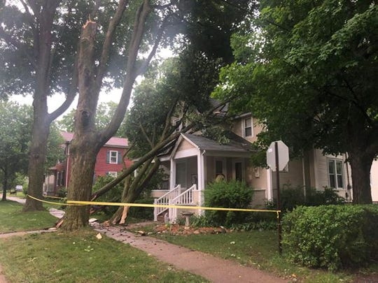 Strong thunderstorms felled many trees in the Lansing area on Wednesday, including this one in Mason.