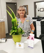 Marianne Foley created the design shown above with Dale Blodgett at the Collier County Tax Collector's office.