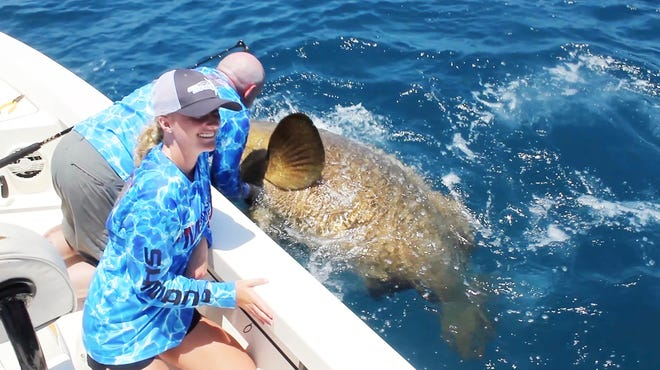 Reegan Werner reels in a massive goliath grouper with a calculated weight of 583 pounds.