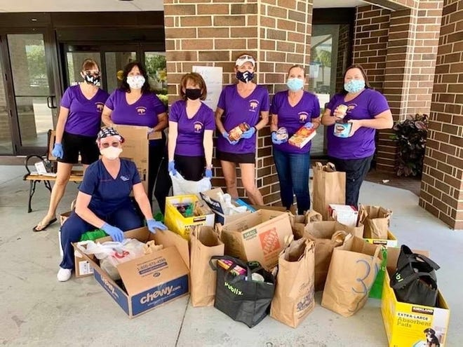 The Nurse Practitioners of Lee County gather food donations for the Harry Chapin Food Bank on May 9, 2020.