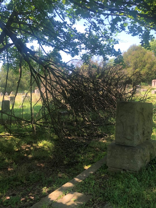 Tree branches have fallen to the ground in some areas of Mount Lebanon Cemetery in Lebanon, Pennsylvania, and one tree has fallen behind the mausoleum. The cost to remove them, according to the head of the cemetery association's board, is $1,000 per tree.