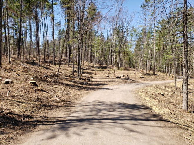 This part of Boot Lake Campground in northern Oconto County is seen after it was cleared of trees felled by the windstorm in July 2019.