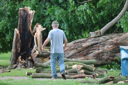In central Port Clinton, a very large tree near the corner of Madison and Sixth streets came crashing down during the storm. The tree stretched long enough to completely cover the road along the 500 block Madison Street.