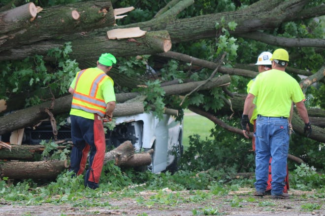 In central Port Clinton, a large tree near the corner of Madison and Sixth streets came crashing down during Wednesday night's storm. The fallen tree completely covered the road along the 500 block of Madison Street.