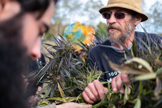 George Knarich discusses the plants with Zach Howard at the New York Harvest Festival and Freedom Fair in Mount Vision, N.Y.