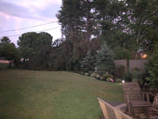 A tree was on a power line behind a home on Pfeifer Drive on Wednesday. Numerous trees were reported down throughout Zanesville and surrounding areas after strong storms hit on Wednesday evening.