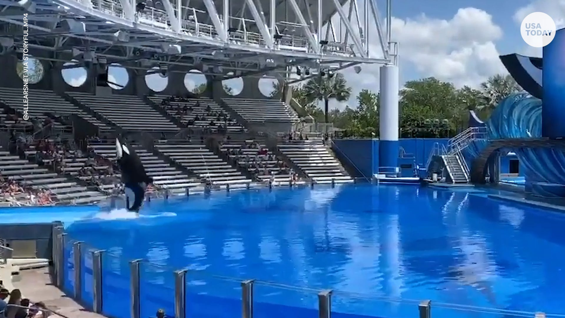 SeaWorld Orlando reopens with new guidelines after being closed for months