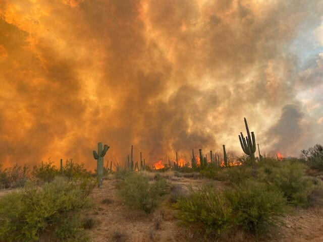 A fire in the Tonto National Forest has burned 600 acres as of Saturday and has zero containment.