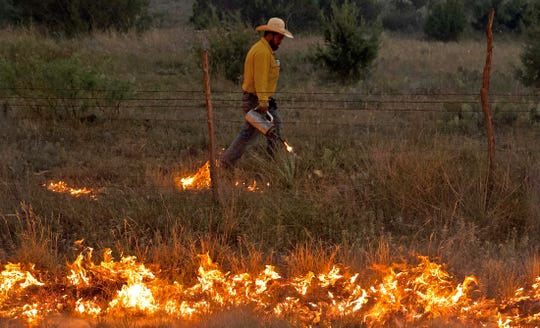A firefighter works on the McDaniel Fire burning northwest of San Angelo on Saturday, June 13, 2020.