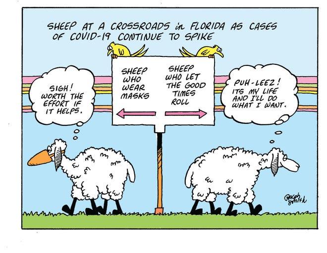 Sheep at a crossroads