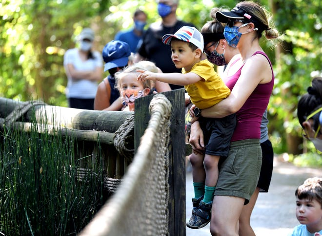 Nashville Zoo has a series of money saving August promotions.