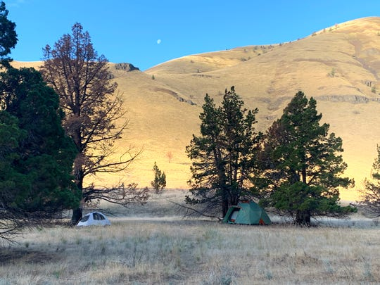 Campsites on the John Day River are mostly found below clusters of tree that provide shade from the heat.
