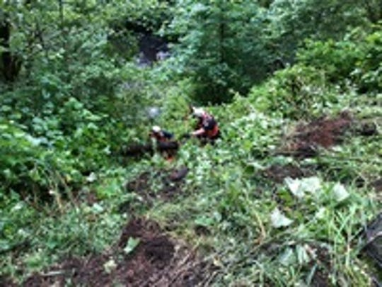 Two people died and four were sent to the hospital Sunday morning after the group drove offa steep embankment in Willamina.