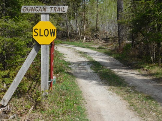 The two-track drive at Duncan's camp winds 250 yards through dense woods to his cabin.