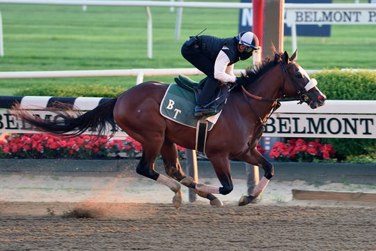 Belmont Stakes favorite Tiz the Law trains at Belmont Park in Elmont, N.Y.