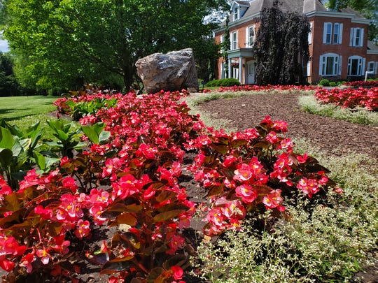 Schedel Arboretum and Gardens will host Summer Science Camps starting June 23.