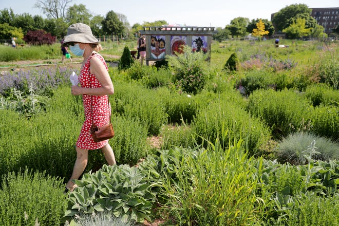 Mary Beth Driscoll of Milwaukee walks the labyrinth at Alice's Garden, 2136 N. 21st St., Milwaukee, on June 18 to honor Juneteenth Day.
