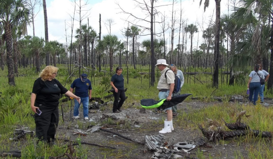 Volunteers survey the WWII bomber crash site in April 2018 in the Tosohatchee Wildlife Management Area.