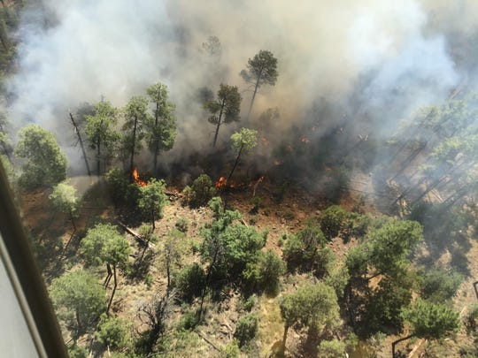 An aerial view of the Tadpole Fire in the Gila National Forest is shown Thursday, June 19, 2020.