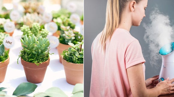 Amazon Deals Get Discounts On Everything From Succulents To Power Tools