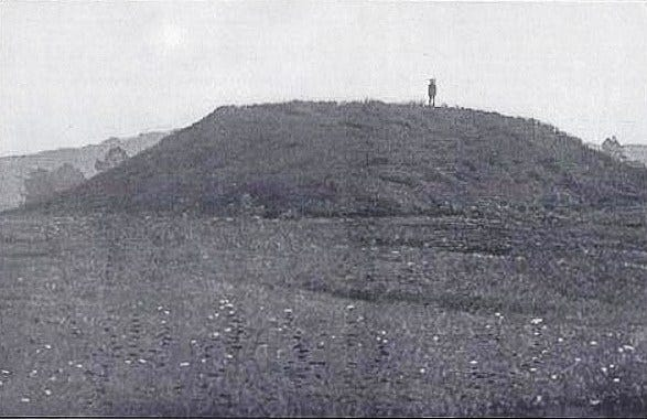 The Nikwasi Mound once supported a ceremonial building.