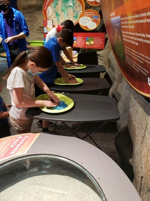 Callie Aaron and other guests learn about tectonic plates and how paleontologists discover fossils during a guided experience at the Arizona Science Center.