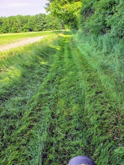 The lane after one pass with the lawnmower.
