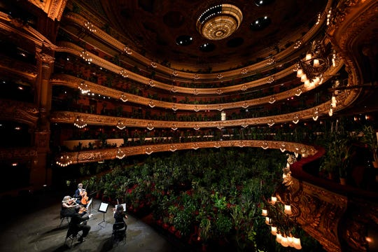 The Uceli Quartet perform for an audience made of plants during a concert created by Spanish artist Eugenio Ampudia and that will be later streamed to mark the reopening of the Liceu Grand Theatre in Barcelona on June 22, 2020.