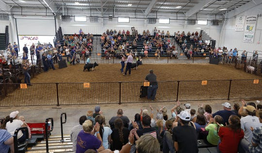Twenty-two cases of coronavirus, plus possibly one death related to COVID-19, have been traced back to the Pickaway County Fair last month, according to Pickaway County Public Health.