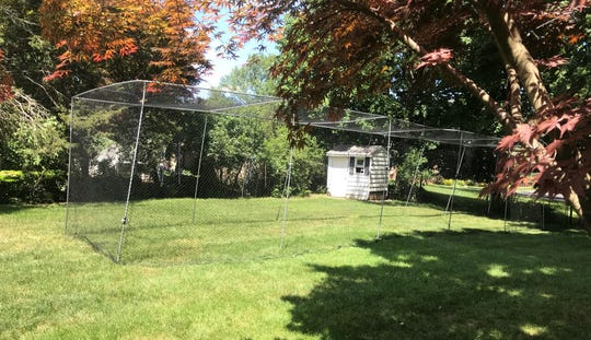 Boonton mom Tracy Paulozzo bought a batting cage.