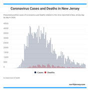 A look at coronavirus cases and death reported by day in New Jersey in 2020.