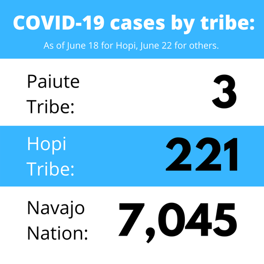 COVID-19 cases by tribe. Numbers as of June 18 for Hopi, June 22 for the others.