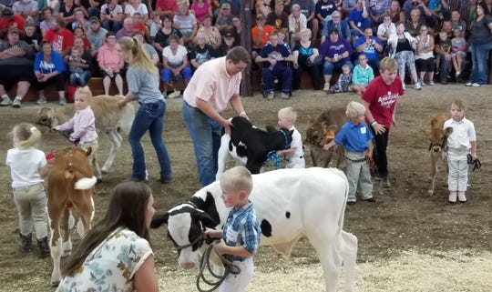 One of the highlights of county fair for many little children who are not old enough to join 4-h is the Little Britches events held at many fairs. These children are excited to be able to show a calf or a lamb before an audience and judges even though they do not get premium moneyfor their effort.