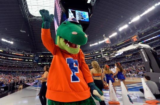 The Florida Gators mascot performs during a game.