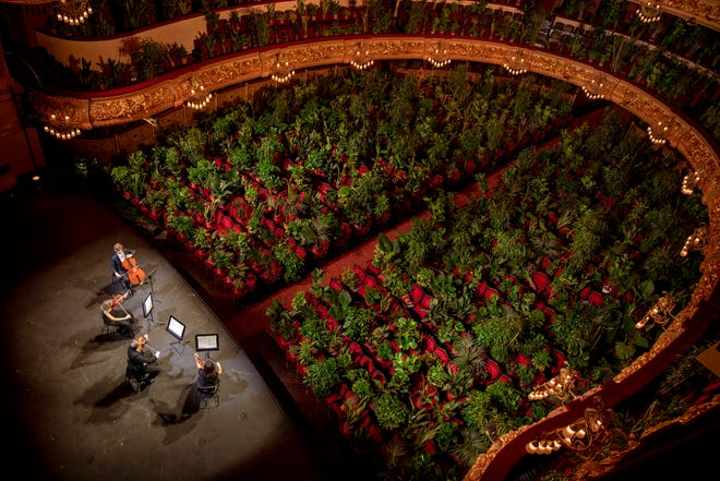 Musicians rehearse at the Gran Teatre del Liceu in Barcelona for their June 22 show, where the auditorium's 2,292 seats were occupied by plants.