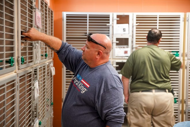Darren Key places a finger into a cage to interact with cats at Montgomery County Animal Care and Control in Clarksville, Tenn., on Tuesday, June 23, 2020.