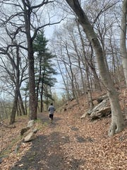 A man runs in Rockefeller State Park Preserve.