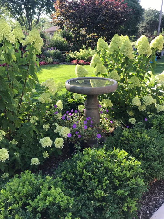 """""""Backyard Oasis"""" by Pam Csatari of Northville Township is this week's winner of the Homestyle Garden Photo Contest."""